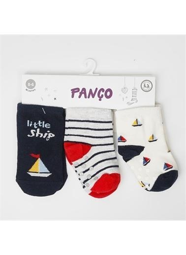 Panço 0-3 Yaş Erkek 3 lü Çorap 2012BB11006 Renksiz